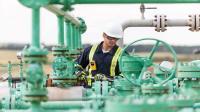 Siemens siap digitalisasi sektor energi