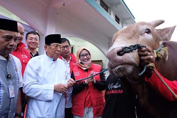 Telkomsel sebar 751 hewan kurban