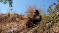 Masyarakat desa belum nikmati akses 4G secara optimal