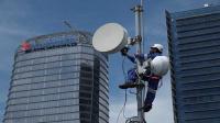 Seminggu WFH, trafik data XL naik 10%