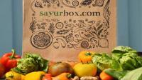 Sayurbox kedatangan investor baru