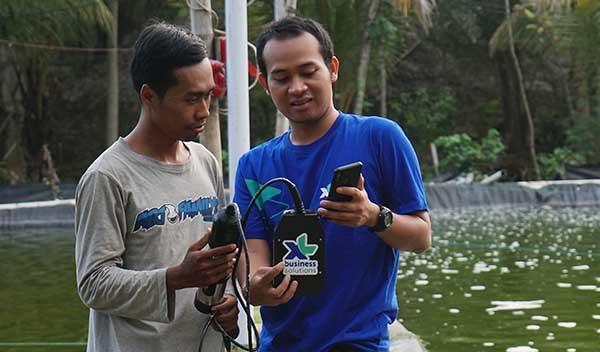 XL tingkatkan kualitas budidaya ikan dan udang dengan IoT