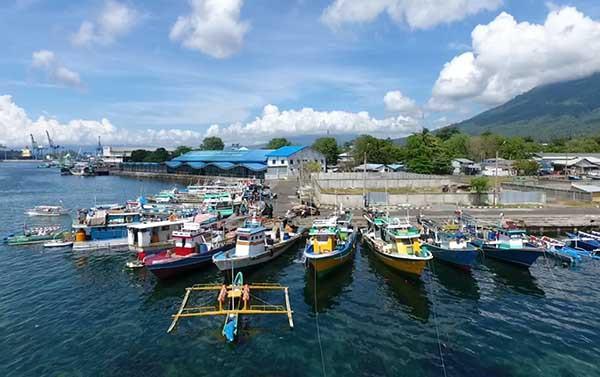 Adopsi digitalisasi di sektor perikanan tangkap akan Tingkatkan PNBP