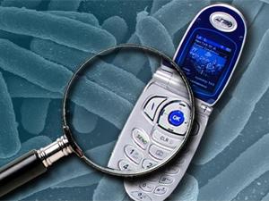 Kehidupan Tersembunyi Dalam Ponsel